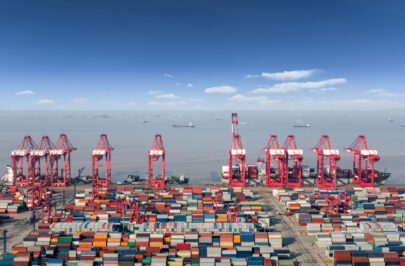 ocean container terminal in shanghai international shipping center